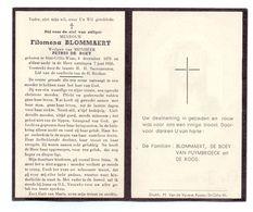 Devotie - Devotion - Filomena Blommaert - Sint-Gillis-Waas 1876-1956 - De Boey - Obituary Notices