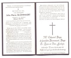 Devotie - Devotion - Julia Blommaert - Sint-Gillis-Waas 1878 - Sint-Niklaas-Waas 1949 - Buys - Obituary Notices