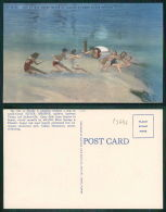 USA [OF #15646] - FLORIDA FL - TUG OF WAR UNDER WATER AT FLORIDA'S FAMED SILVER SPRINGS - Jacksonville