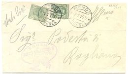 1929 FLOREALE C. 25+ LEONI C. 5 PIEGO TARIFFA RIDOTTA RENDE 2.2.29 BELLA MONOCROMA (8876) - Storia Postale