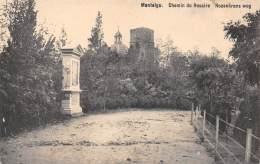 MONTAIGU - Chemin Du Rosaire - Rozenkrans Weg - Scherpenheuvel-Zichem
