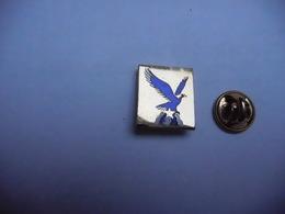 Beau Pin's  En EGF , Oiseau Aigle , USA ?? - Animals