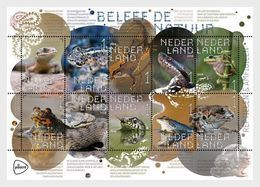 NETHERLANDS, 2018, MNH, REPTILES, AMPHIBIANS, SNAKES, FROGS, LIZARDS, SHEETLET - Snakes