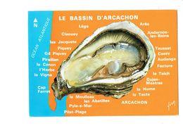 Cpm - LE BASSIN D ARCACHON - Huître - Promenade Autour Du Bassin - Pescados Y Crustáceos