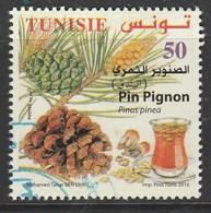 Tunisia 2016 Pine Trees 50 D Multicolor SW 1888 O USED - Tunisia