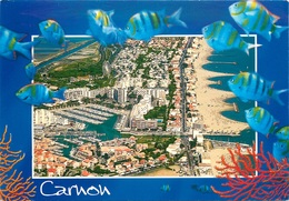 CPSM Carnon       L2536 - France
