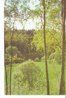 K2. Real Photo Postcard By Gailitis Latvia Liesma 1975 Forest Meadow In Latvian Tervete Forest Nature Park - Latvia
