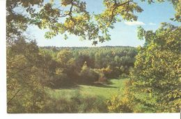 K2. Real Photo Postcard By Gailitis Latvia Liesma 1975 View From The Swan Shore In Latvian Tervete Forest Nature Park - Latvia