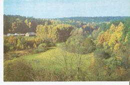 K2 Real Photo Postcard By Gailitis Latvia Liesma 1975 View Vicinity Environs Locality Latvian Tervete Forest Nature Park - Latvia