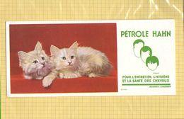 BUVARD  : Petrole HANN 2 Chats - Perfume & Beauty
