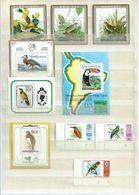 Birds,oiseaux,vogels,vögel (3 Scans) - Collections, Lots & Séries