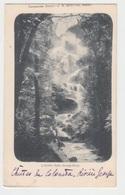 TASMANIA / COLUMBA FALLS - GEORGE RIVER - Hobart