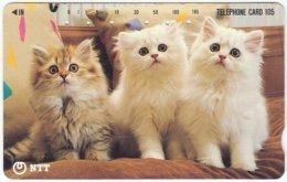 JAPAN F-556 Magnetic NTT [231-027] - Animal, Cat - Used - Japan