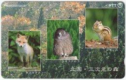 JAPAN F-638 Magnetic NTT [431-811] - Animal, Fox, Bird, Squirrel - Used - Japan