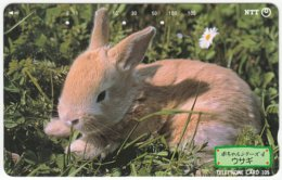 JAPAN F-650 Magnetic NTT [231-143] - Animal, Rabbit - Used - Japan