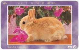 JAPAN F-653 Magnetic NTT [231-291] - Animal, Rabbit - Used - Japan