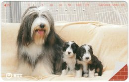 JAPAN F-664 Magnetic NTT [231-260] - Animal, Dog - Used - Japan