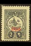 1909 2pi Blue-black Printed Matter Overprint Perf 12 Plate I (Michel 173 I C, SG N280A), Fine Mint, Very Fresh. For More - Turkey