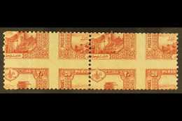 1914 SPECTACULAR PERFORATION ERROR. 20pa Red Castle Of Europa (Michel 234, SG 504), Very Fine Mint (one Stamp Is NHM) Ho - Turkey
