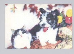 ANIMALS Pocket Calendar 1996 RUSSIA Dogs Dog Cat PLANETA № 921 - Calendriers