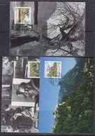 Liechtenstein 1996 Maler Aus Liechtenstein 3v  3maxicard (37326) - Maximum Cards