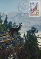 Carte Maximum  1er  Jour   Parc   Natioçnal  Des  PYRENEES  OCCIDENTALES    TARBES   1971 - Cartes-Maximum