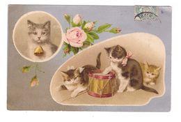 Chat Illustration Illustrateur Chats Chaton Chatons Tambour Fleur Rose Cachet 1905 Fantaisie KF Editeurs - Katten