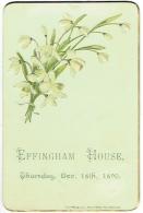 Effingham House. 18 Déc. 1890. Fleurs En Relief. - Announcements