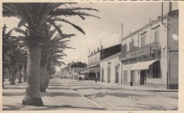 Arzew Algeria, Avenue De La Plage Street Scene, Compagnie Algerienne Building, C1920s/30s Vintage Postcard - Algeria