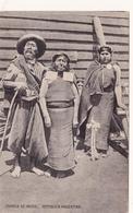 CPA ARGENTINA ARGENTINE Familia De Indios Indiens Indians - Argentina