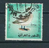 1968 Irak Birds,oiseaux,vögel,vogels Used/gebruikt/oblitere - Irak