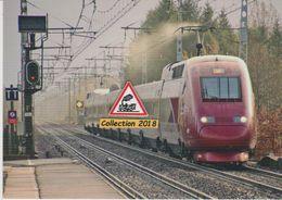 Rame TGV Thalys PBKA N°4301, De Passage à Montfort-le-Gesnois (72) - - Trains
