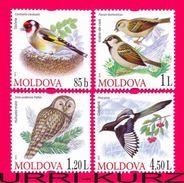 MOLDOVA 2010 Nature Fauna Birds Bird Goldfinch Owls Owl Magpie Sparrow 4v Mi698-701 Sc669-672 MNH - Birds