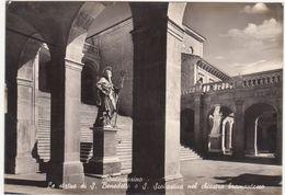 M197 MONTECASSINO FROSINONE STATUE S BENEDETTO E S SEBASTIANO NEL CHIOSTRO BRAMANTESCO 1957 - Frosinone