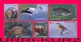 MOLDOVA 2014 Nature Fauna Fish Zander Carp Birds White Stork, Western Yellow Wagtail Snails Mollusks 6v Mi 883-888 MNH - Cranes And Other Gruiformes