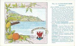Carte Département Alpes Maritimes : Nice, Puget-Théniers, Grasse, Antibes, Cannes, Menton. - Carte Geografiche