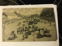 DIEST 1915  MARCHE AUX BETAILS   VEEMARKT - Diegem