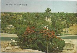 V1390 The Jericho Hill (Tel-Al-Sultan)  / Non Viaggiata - Palestina