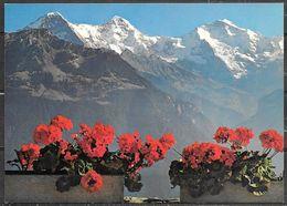 Switzerland, Auf Eiger, Monch Und Jungfrau, Unused - BE Berne