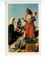 250842 Albania Shopping In Milot Photo Tunkel Vintage Postcard - Albania