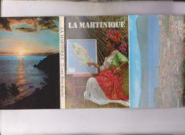 CARNET 12 CPM MARTINIQUE - Martinique