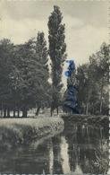 Westerlo  :  Nete  (  Geschreven  1963 Met Zegels ) - Westerlo