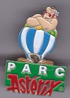 Gros Pin's  PARC ASTERIX - Comics