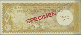 Netherlands Antilles / Niederländische Antillen: 250 Gulden 1962 Specimen P. 6s With 012345 Serial N - Netherlands Antilles (...-1986)