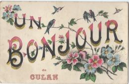 Un Bonjour De CULAN (18) Fleurs Et Oiseaux - RARE - CPA Ayant Circulé En 1921 - Culan