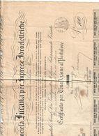 SOCIETA' LUCANA PER IMPRESE IDROELETTRICHE CERTIFICATO PER UNA AZIONE AL PORTATORE 01 07 1930  Doc.249 - Azioni & Titoli