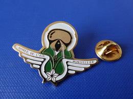 Pin's Militaire - Armée De L'air Montpellier - Pilote De Chasse - Ailes (LB12) - Army