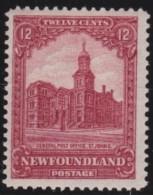 Newfoundlans    .    SG   .       173         .     *       .     Ongebruikt    .    /      .     Mint-hinged - Newfoundland