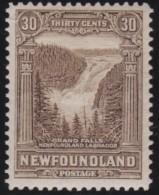 Newfoundlans    .    SG   .       178        .     *       .     Ongebruikt    .    /      .     Mint-hinged - Newfoundland