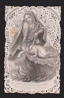 26372 Image Pieuse -dentelle Canivet - Vierge Enfant Jésus Scapulaire Serpent -ed Bouasse Lebel Paris -1225 Dechirure ! - Images Religieuses